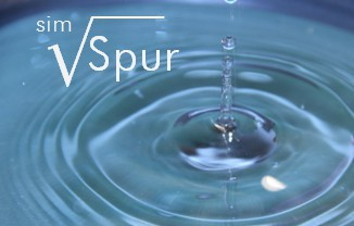 SpurSIM - Basic Version